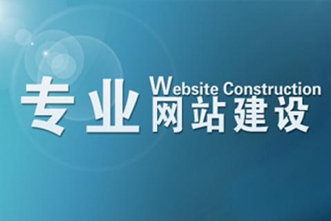 专业网站建设